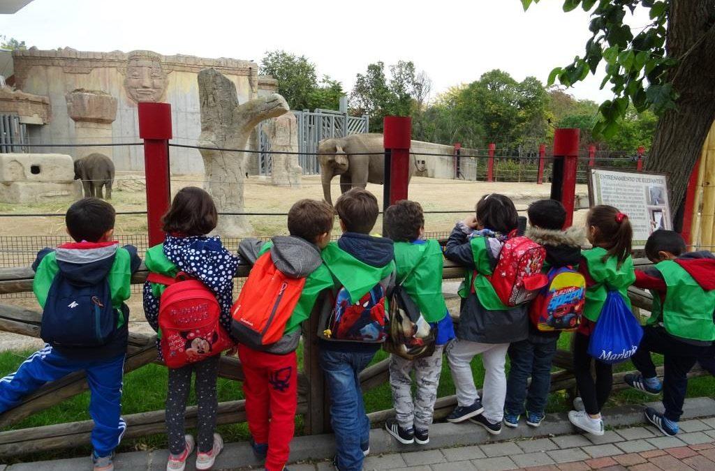 Nos vamos al Zoo